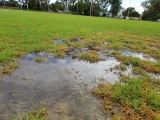 Sports Turf Drainage Project – Churchlands SHS Lower Oval, Perth, WA
